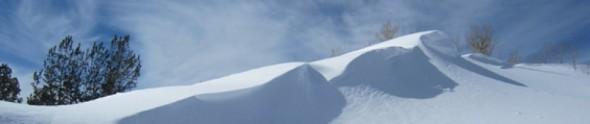 cropped-winter.jpg